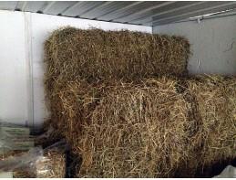 Bales of Yorkshire Meadow Hay