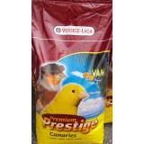 Versele Laga Canary with VAM