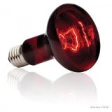 Red 250w Heat Bulb