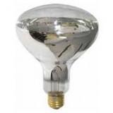 White 250w Heat Bulb